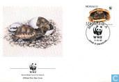 WWF-tortoise