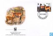 WWF-Drina