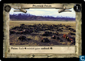 Pelennor Fields