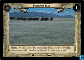 Pelennor Flat