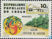 Orchards in Loudima