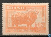 Intl. Livestock Exposition at Bage