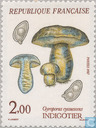 Postage Stamps - France [FRA] - Mushrooms
