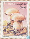 PARAFIL Mushrooms