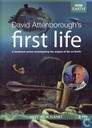 DVD / Video / Blu-ray - DVD - First Life