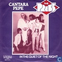 Vinyl records and CDs - Press, The - Cantare Pepe
