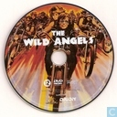 DVD / Video / Blu-ray - DVD - The Wild Angels