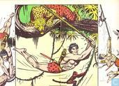 Comic Books - Tarzan of the Apes - In de macht van de Terribs