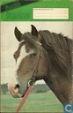 Comic Books - Havertje - Ponyclub 95