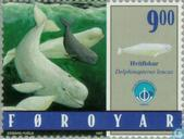 Postage Stamps - Faroe Islands - Marine Mammals
