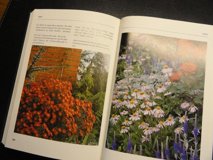 Bloemen En Planten Encyclopedie.Spectrum Compact Bloemen En Planten Encyclopedie 1990 Catawiki