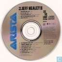 Vinyl records and CDs - Jeff Healey Band, The - See the Light