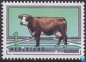 Dutch Cattle Breeds