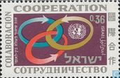 Int. year of cooperation