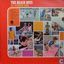 Platen en CD's - Beach Boys, The - All Summer Long