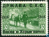 Bosnian stamp overprinted