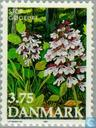 Postage Stamps - Denmark - Flowers