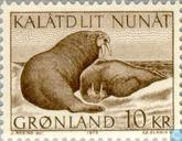 Postage Stamps - Greenland - Walrus