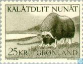 Postage Stamps - Greenland - Musk ox