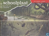 De schoolplaat in ons land