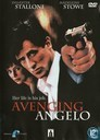 DVD / Video / Blu-ray - DVD - Avenging Angelo
