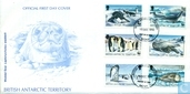WWF-seals and penguins