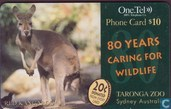 80 Years Caring for Wildlife