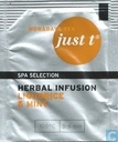 Herbal Infusion Liquorice & Mint