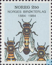 Norwegian Bees & chickens