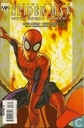 Spider-Man: With great power... 3