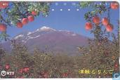 Apples with Mountain