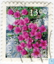 Briefmarken - Norwegen - Blumen-