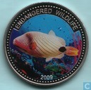 "Palau 1 dollar 2009 (PROOF) ""Endangered Wildlife - Orange Lined Tigerfish"""