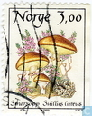 Postage Stamps - Norway - 300 brown / multicolor