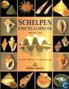 Schelpen encyclopedie