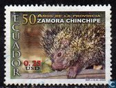 50th Anniversary of Zamora Chinchipe Province.
