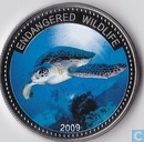 "Palau 1 dollar 2009 (PROOF) ""green turtle"""