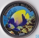 "Palau 1 dollar 2009 (PROOF) ""Angelfish"""