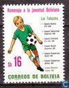 Bolivian youth
