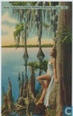 Study in Knees at Cypress Gardens in Beautiful Florida  159