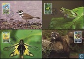WWF-small fauna