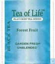 Black Tea Forest Fruit