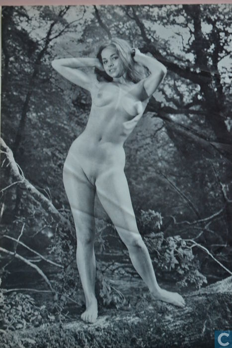 What words..., Nude vintage nudists magazines sonnenfreunde