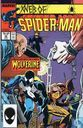Web of Spider-man  29