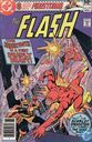 The Flash 291