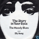 The Story in Your Eyes