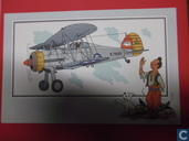 "Chromo's ""Aviation guerre 1939-1945"