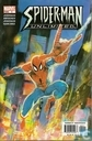 Spider-Man Unlimited 5
