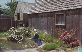 Pilgrims fist fort and church Garden Medicinal Herbs Dr Samuel Fuller House