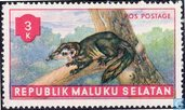 Animals South Moluccas